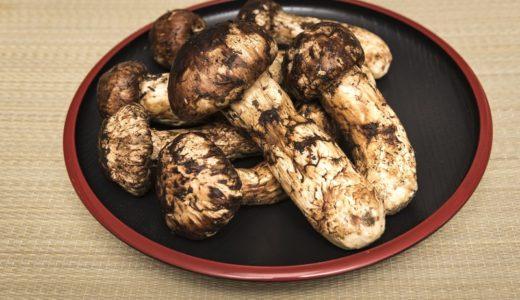 松茸の賞味期限は常温で1~2日!冷凍保存だと1か月ほど!