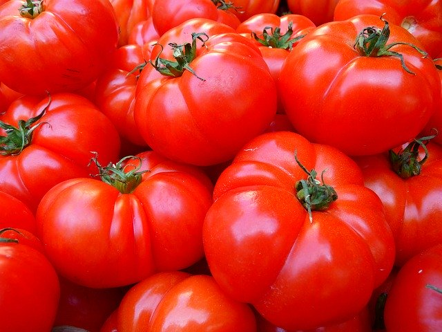 上沼恵美子のおしゃべりクッキング|鶏のトマト風味パスタのレシピと作り方おさらい!